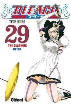BLEACH 29 (COMIC)